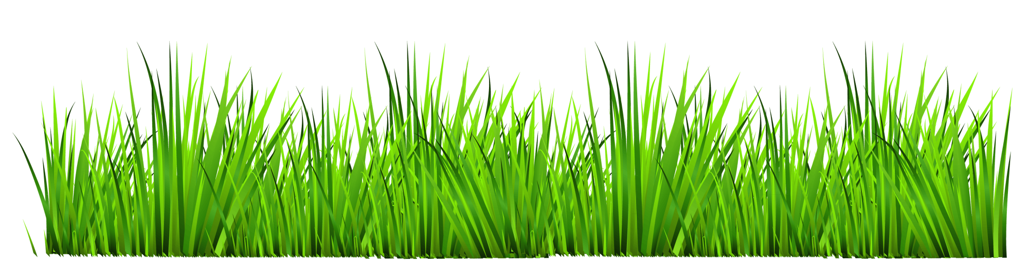 hight resolution of grass clip art clipart cliparts for you