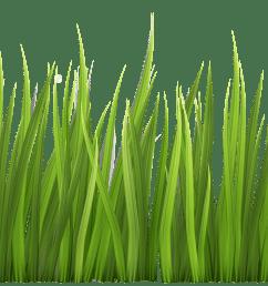 grass clip art free [ 4764 x 1952 Pixel ]