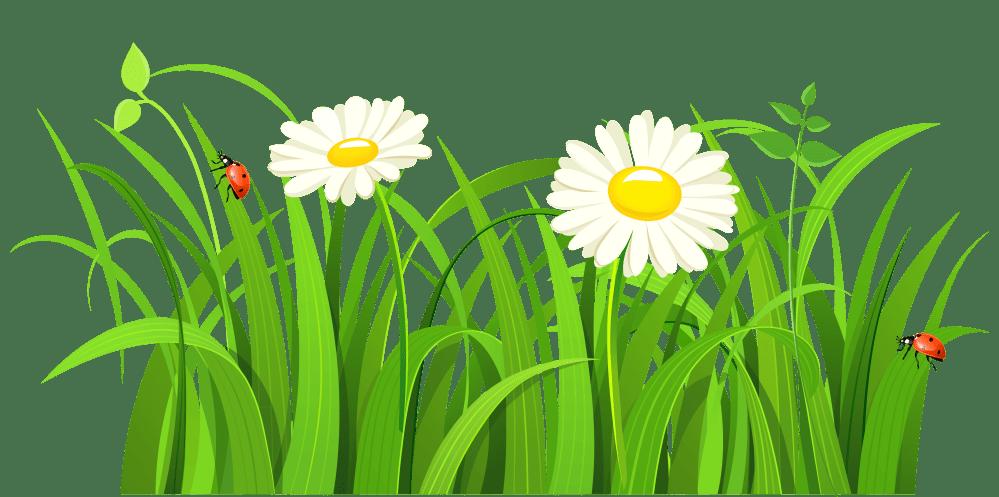 medium resolution of grass clip art free free clipart image 5
