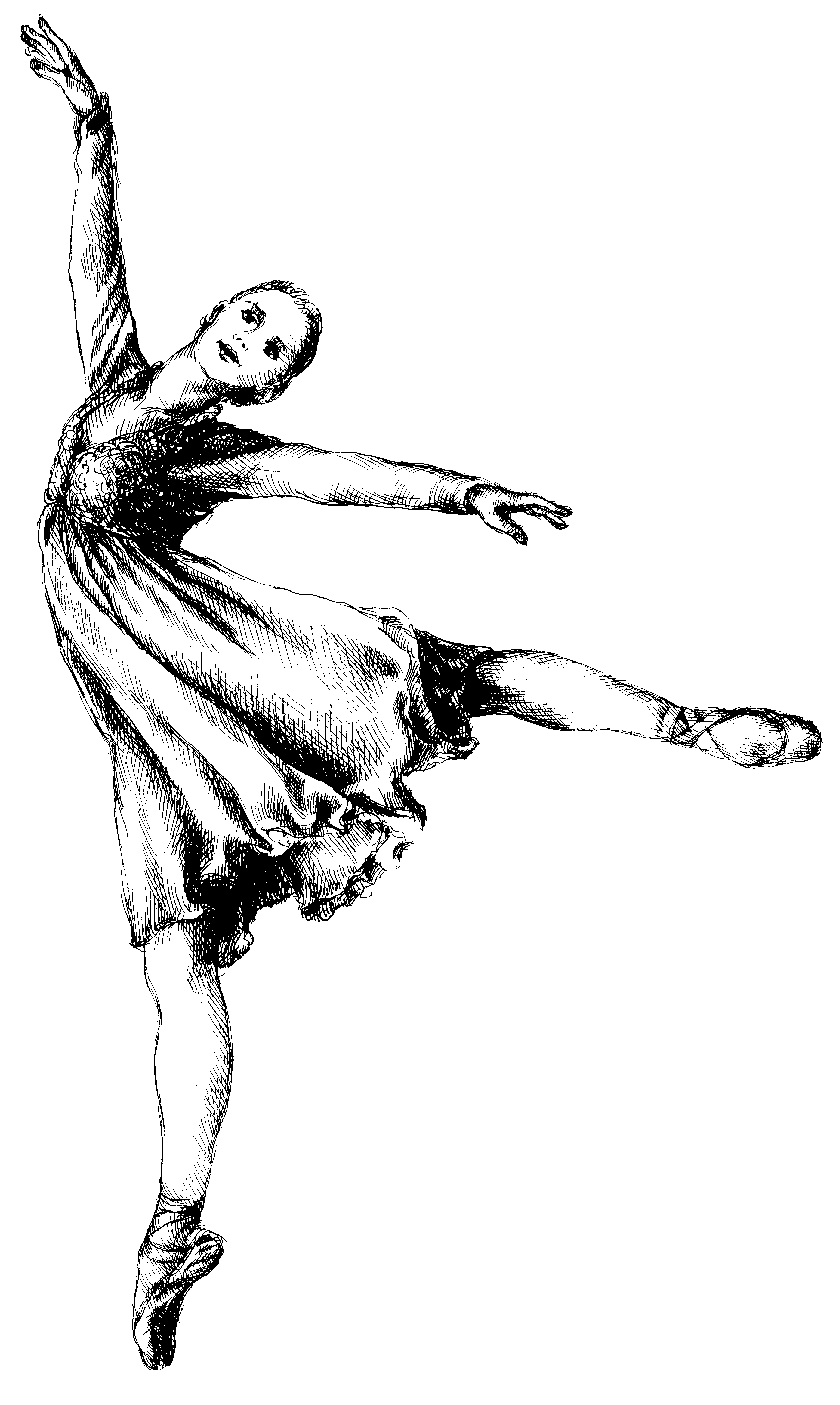 hight resolution of free ballet clipart