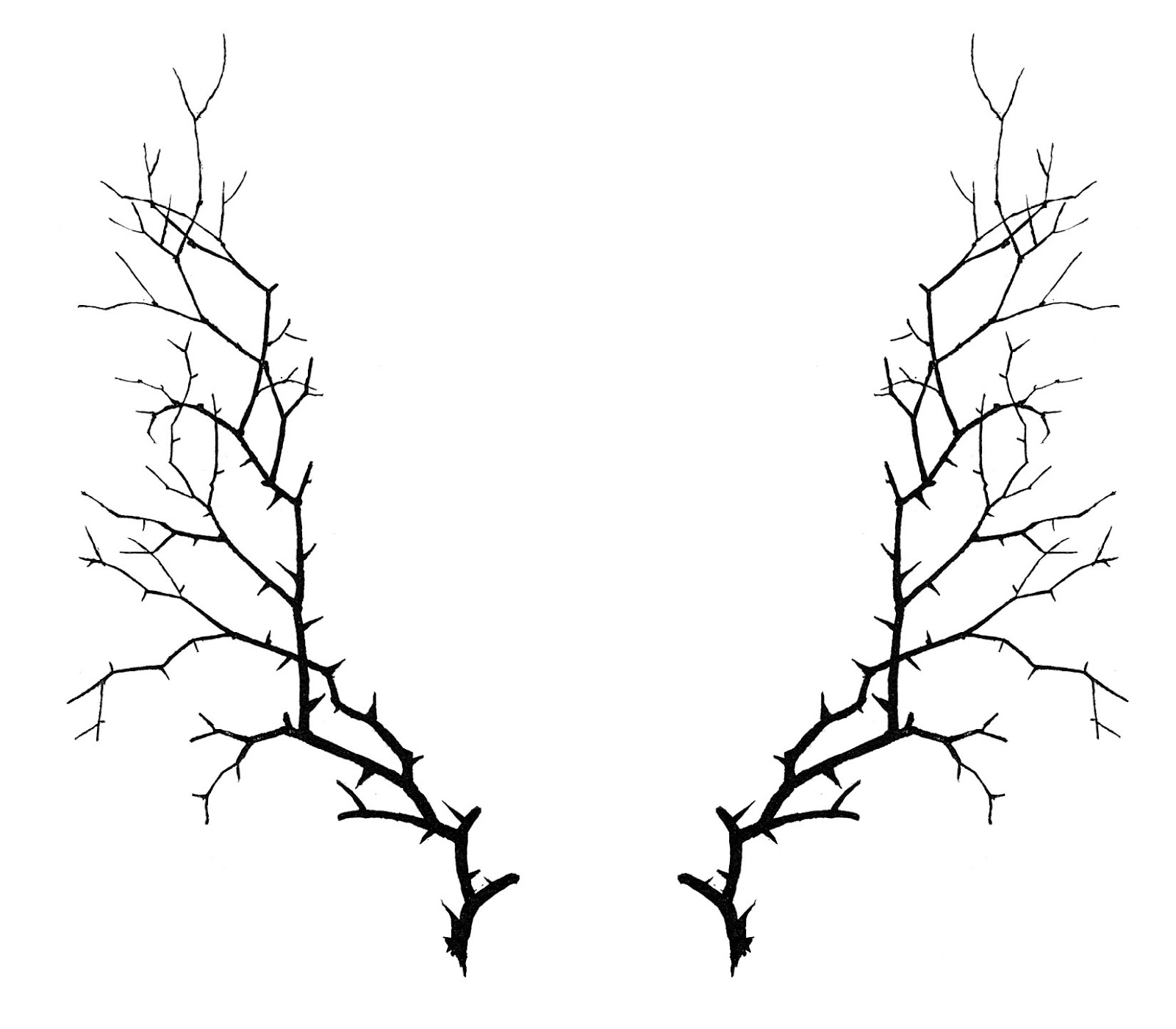 Free Thorn Cliparts Download Free Clip Art Free Clip Art