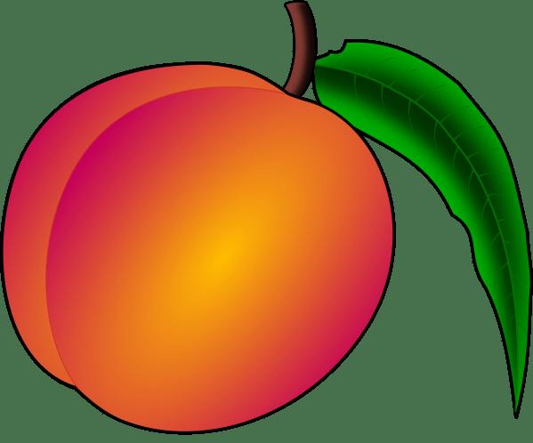 Free Peaches Cliparts Clip Art