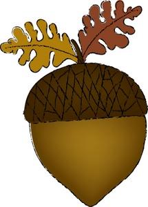 acorn clip art free