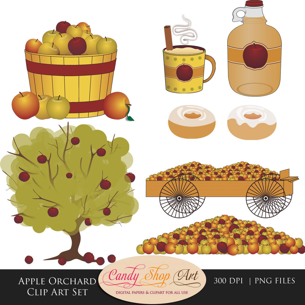 medium resolution of apple orchard clip art set apples apple by candyshopdigitalart