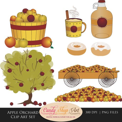 small resolution of apple orchard clip art set apples apple by candyshopdigitalart