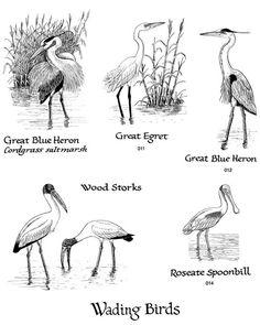 Free Wetland Cliparts, Download Free Clip Art, Free Clip
