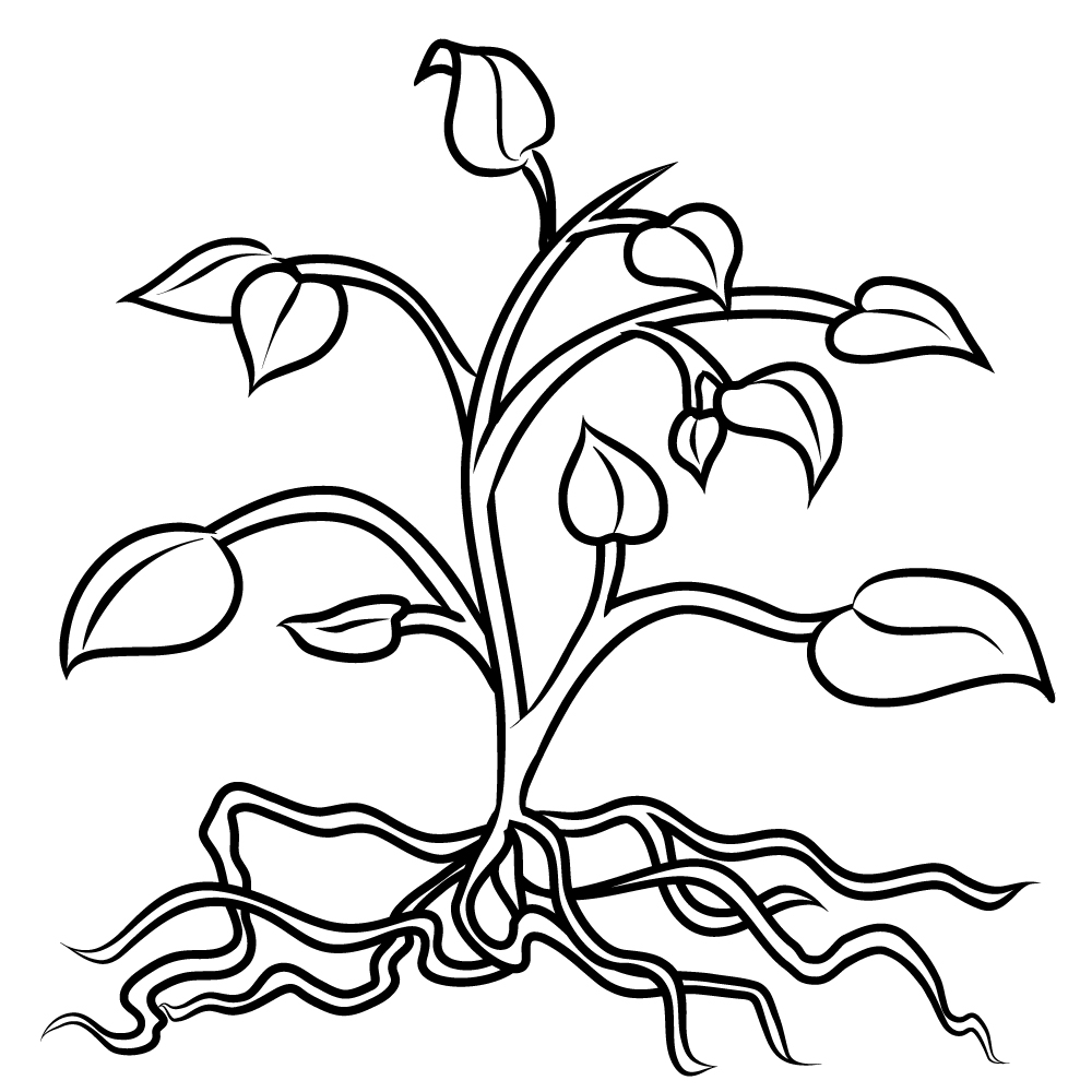 Free Root Cliparts, Download Free Clip Art, Free Clip Art