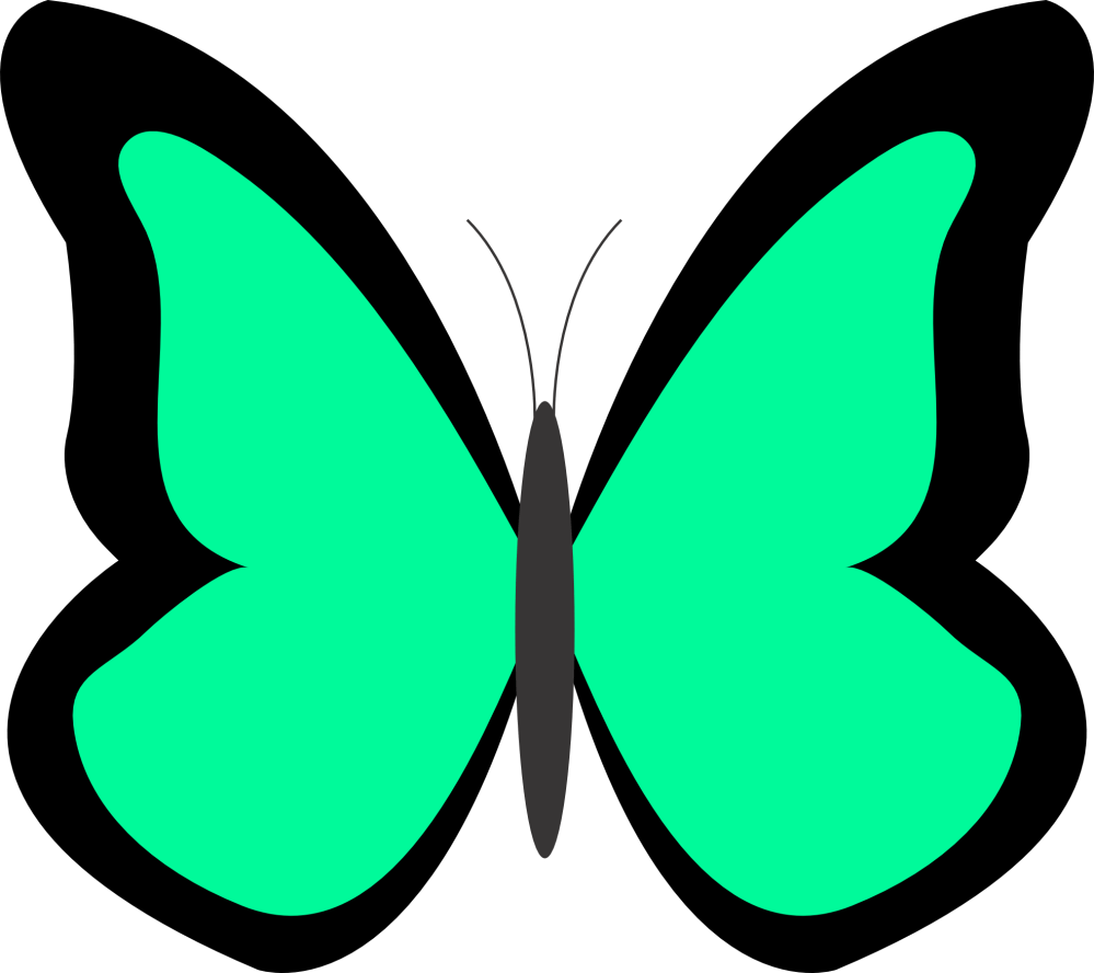 medium resolution of clipart image for butterflies
