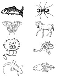 Free Classifying Cliparts, Download Free Clip Art, Free