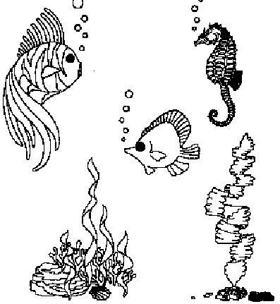 Free Aquarium Cliparts, Download Free Clip Art, Free Clip
