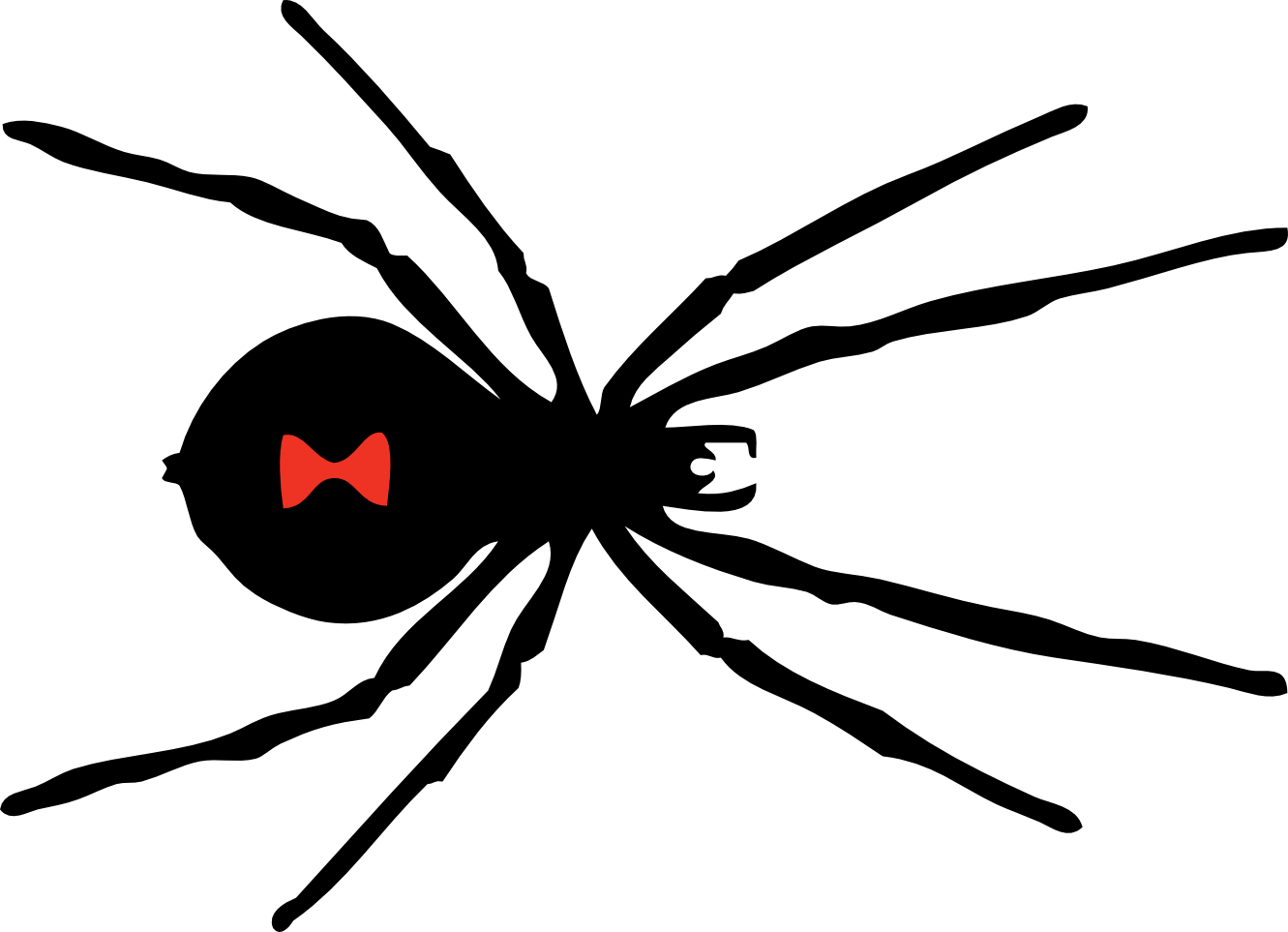 Free Spiders Cliparts Download Free Clip Art Free Clip