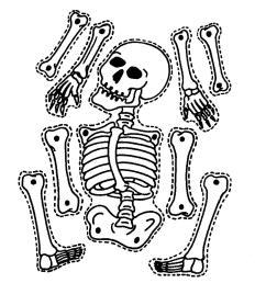 halloween skeleton clipart [ 1481 x 1484 Pixel ]