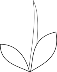 Free Flower Stem Clipart Black And White Download Free Clip Art Free Clip Art on Clipart Library
