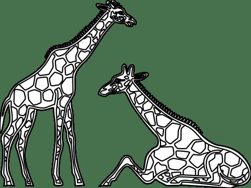 small resolution of giraffe love cliparts 3040423 license personal use