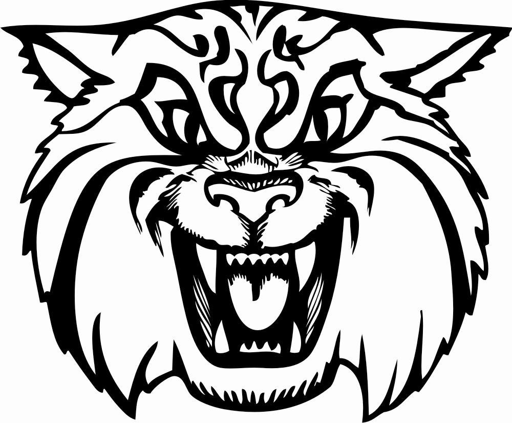 Free Wildcat Mascot, Download Free Clip Art, Free Clip Art