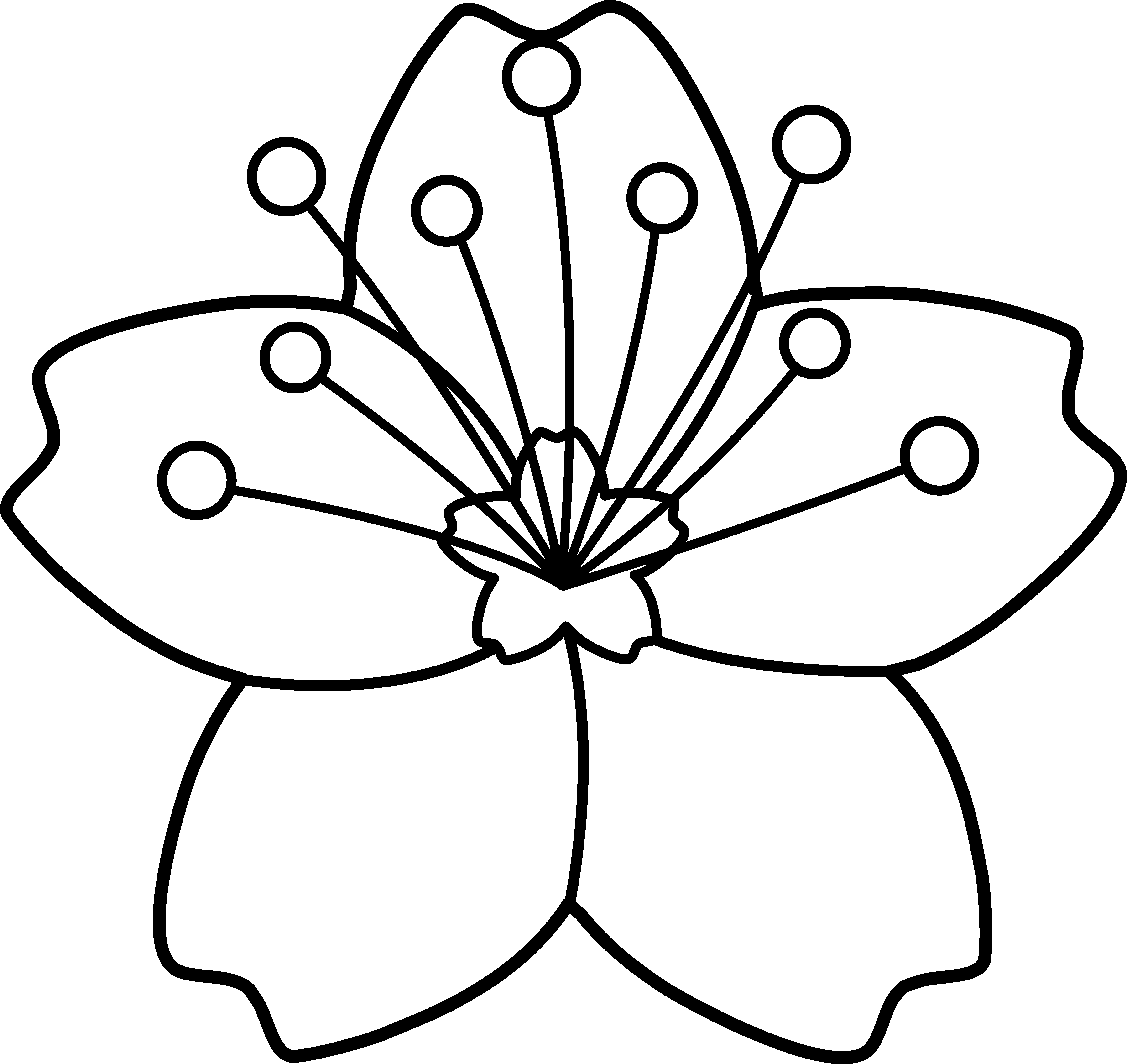 Free Simple Flower Outline Download Free Clip Art Free