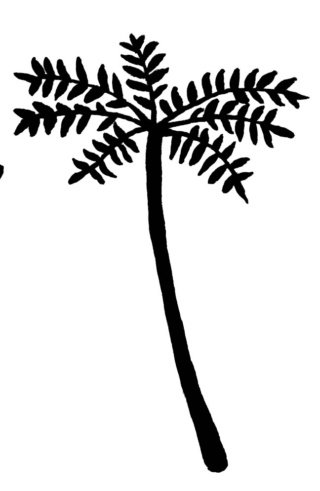Free Rain Forest Clipart, Download Free Clip Art, Free