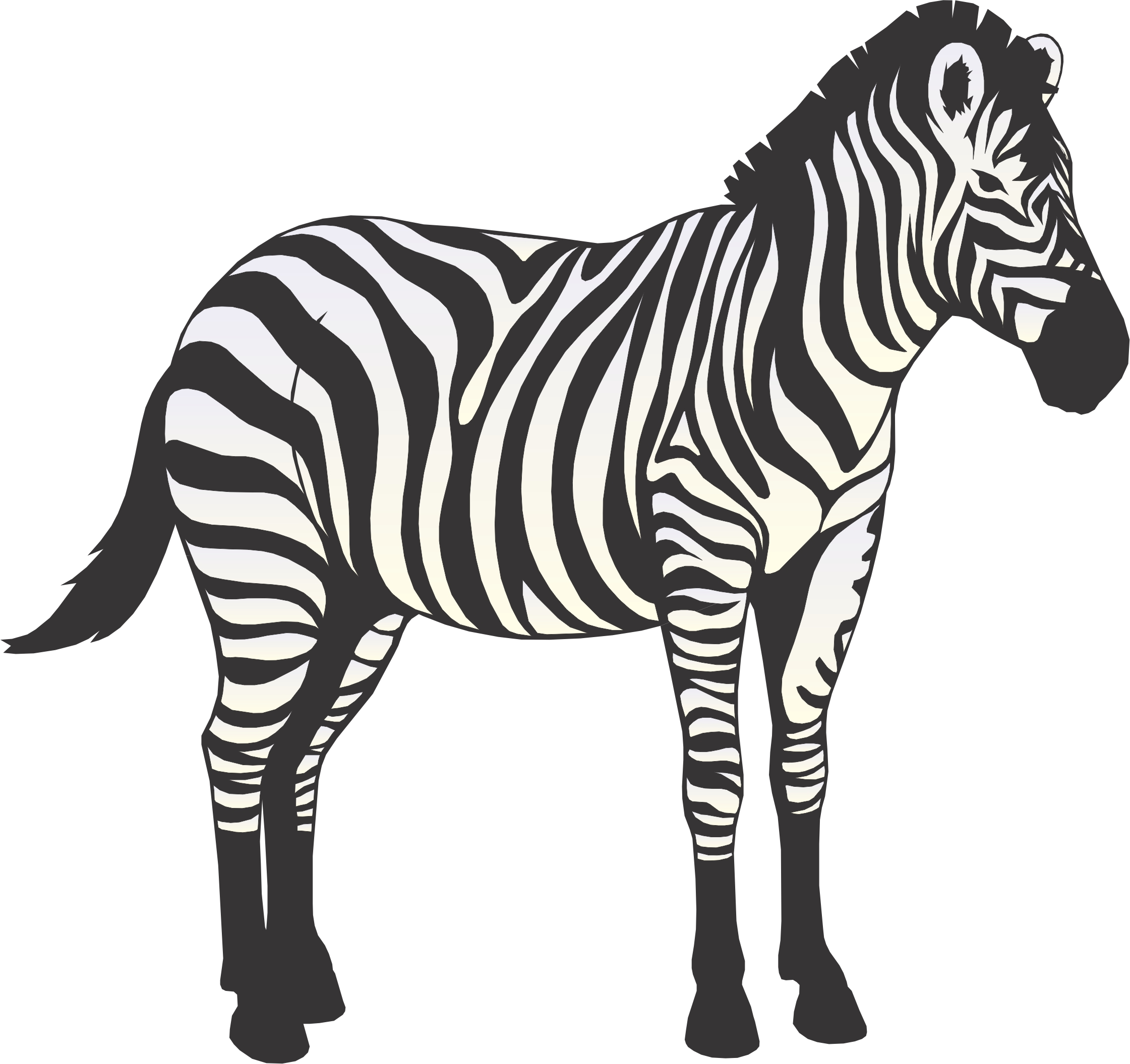 Free Zebra Cartoon Download Free Clip Art Free Clip Art