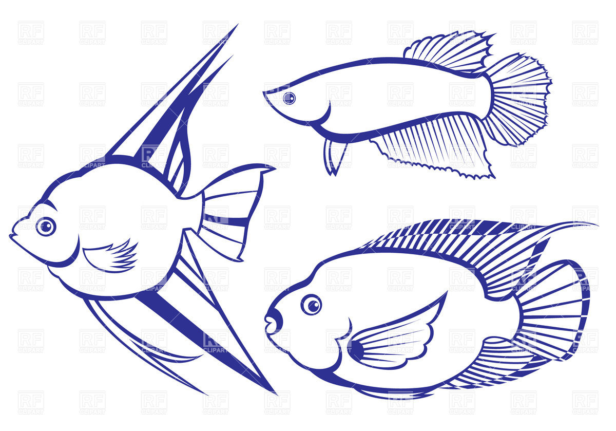 Free Outline Of Fish Clipart Download Free Clip Art Free