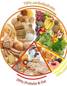 Balanced diet chart license personal use also healthy balance food in clip rh clipart library