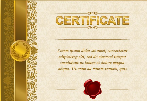 Excellent Certificate And Diploma Template Design 04 Vector