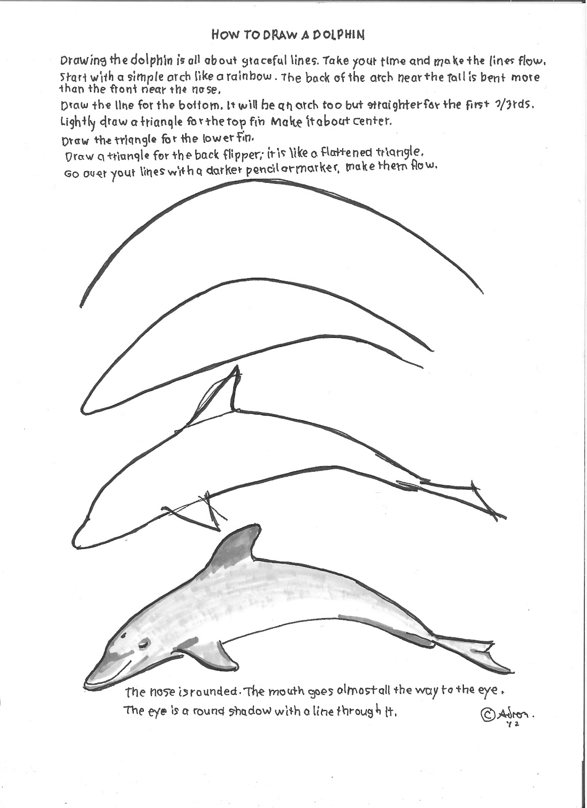 Free How To Draw A Dolphin Download Free Clip Art Free