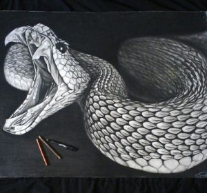 snake drawing tattoo drawings realistic snakes draw scales sketch clipart pencil animal library cool artwork rattlesnake dragon cliparts reptiles google