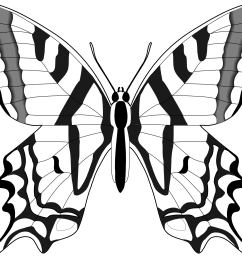butterfly 55 black white line art svg clipart library clipart library [ 1969 x 1626 Pixel ]