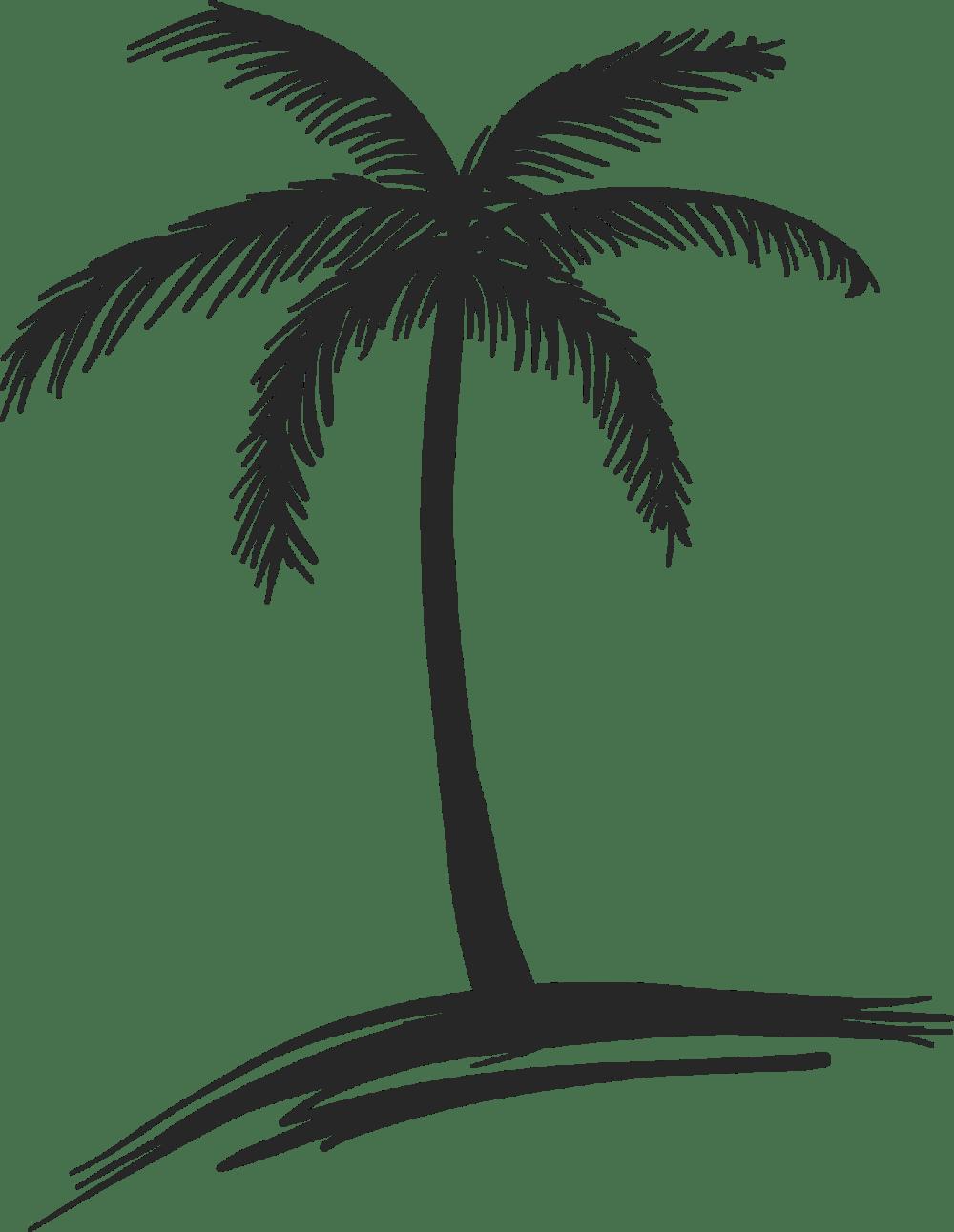 medium resolution of palm trees drawings