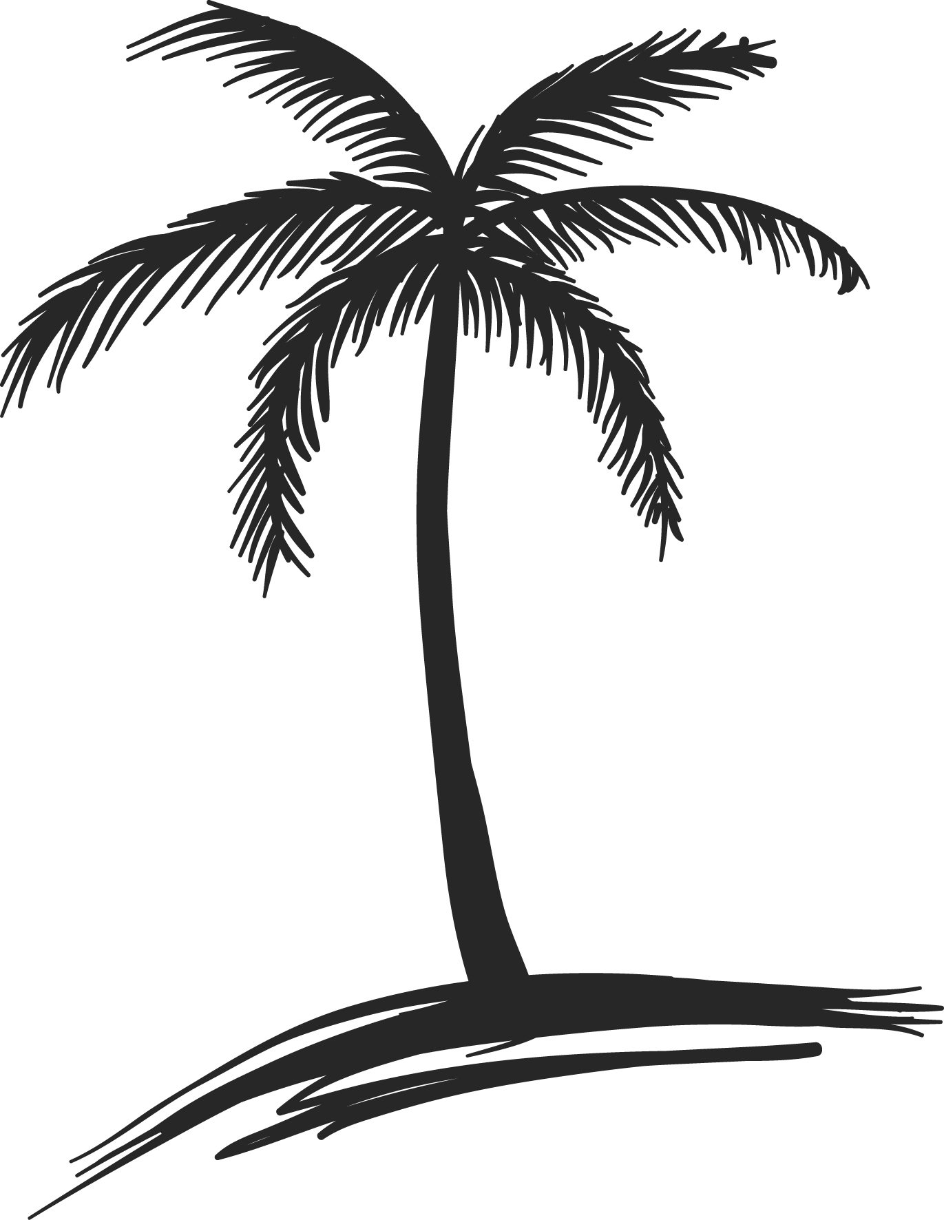 hight resolution of palm trees drawings