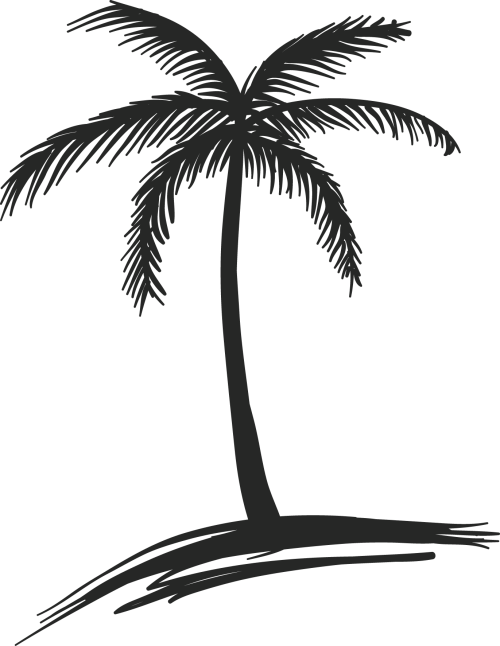 small resolution of palm trees drawings
