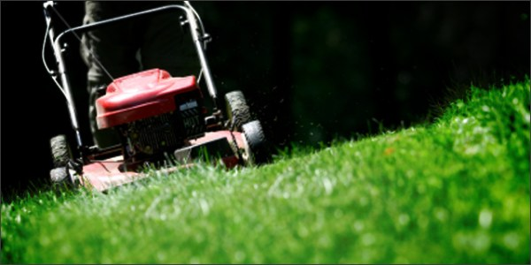 free lawn mowing