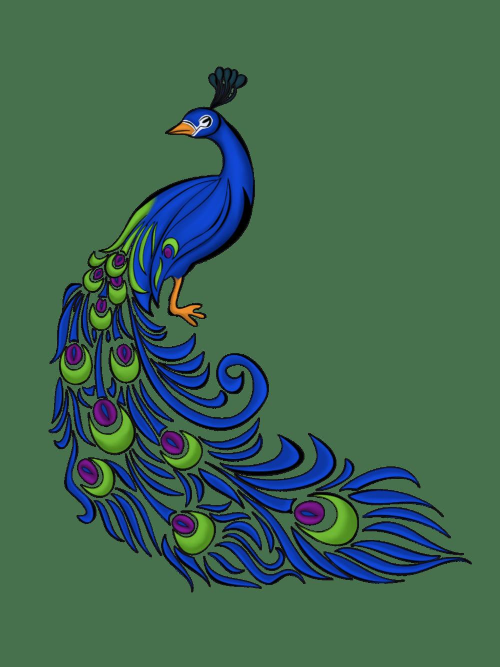 medium resolution of peacock vector art clipart library