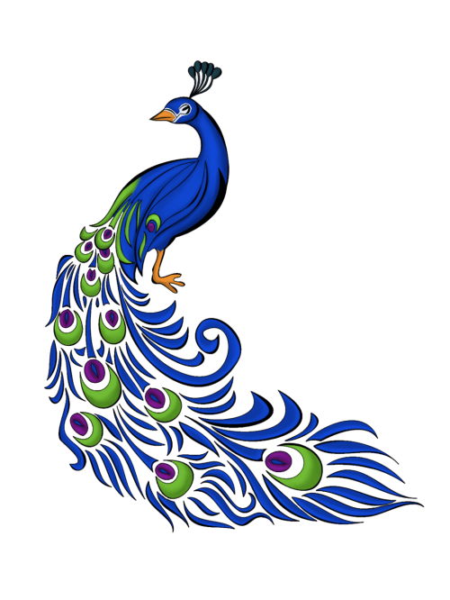 small resolution of peacock vector art clipart library