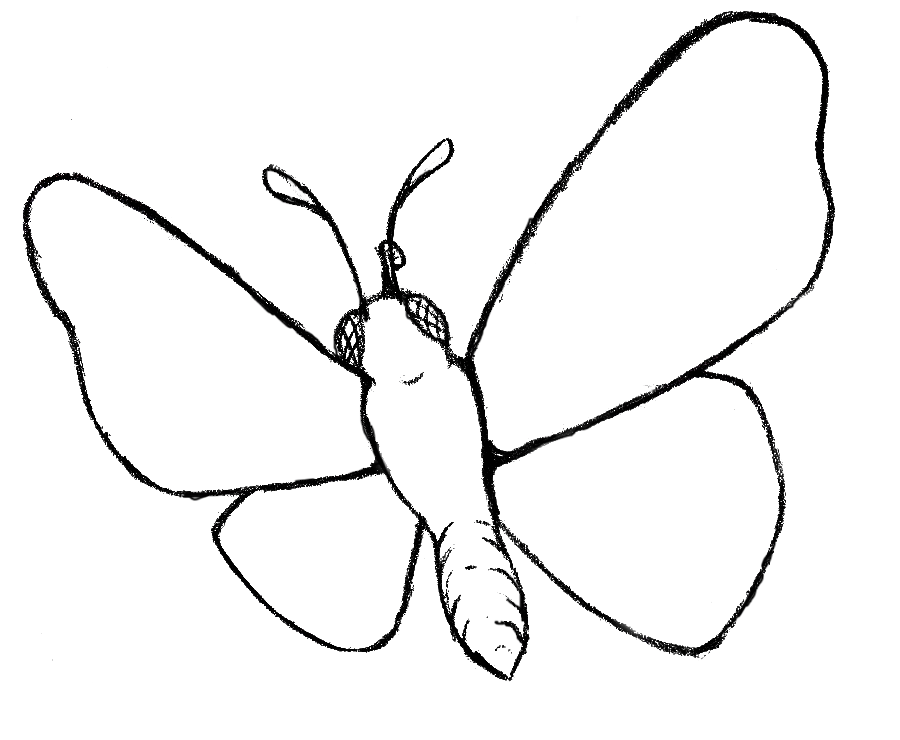 Free Printable Butterfly Cutouts, Download Free Clip Art