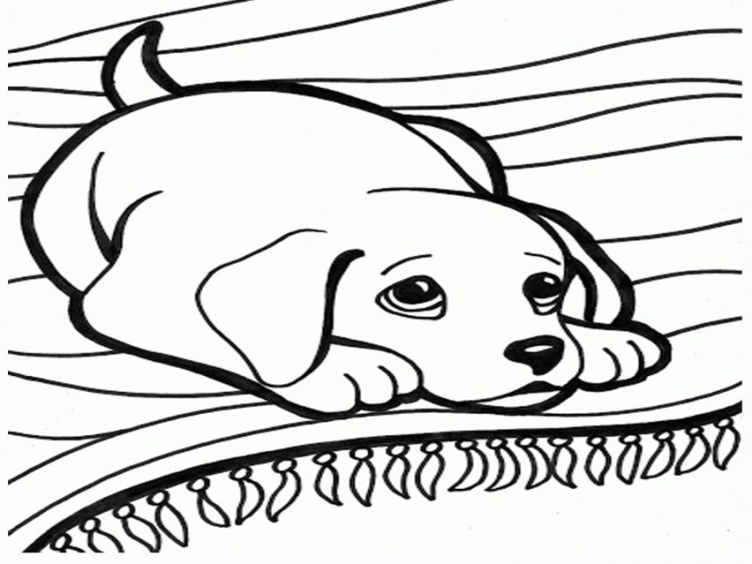 dog coloring pages dachshund 283 label coloringarea