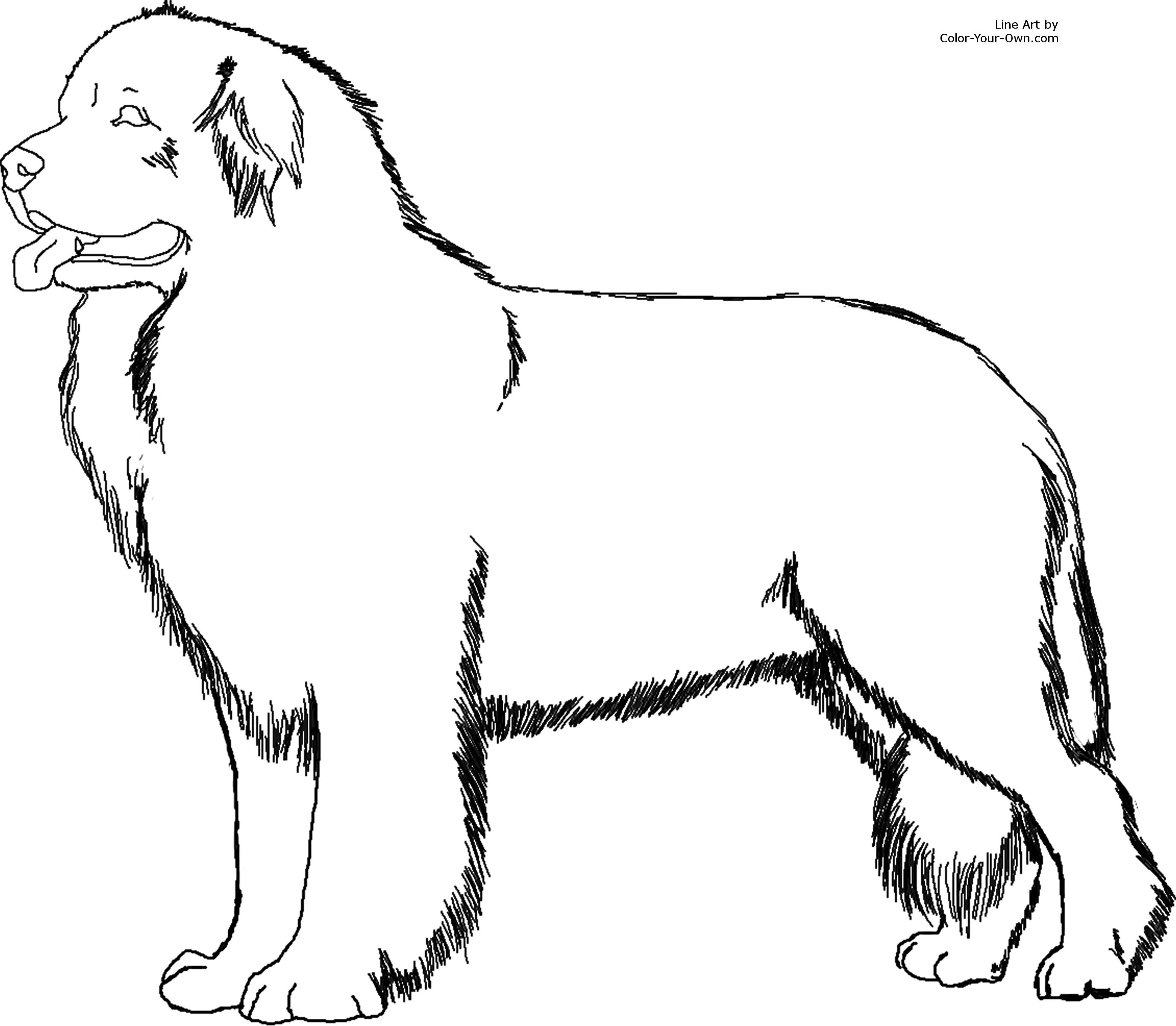 Free Dog Line Art Download Free Clip Art Free Clip Art