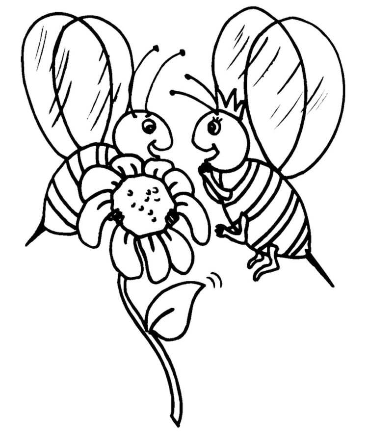 Free Sunflower Line Art, Download Free Clip Art, Free Clip