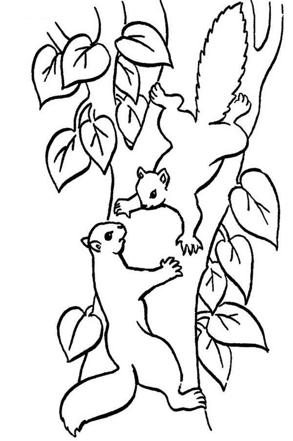 climber Colouring Pages (page 2)