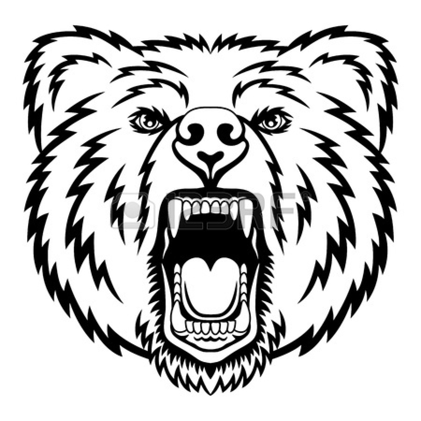 Standing Black Bear Drawing Clipart Library