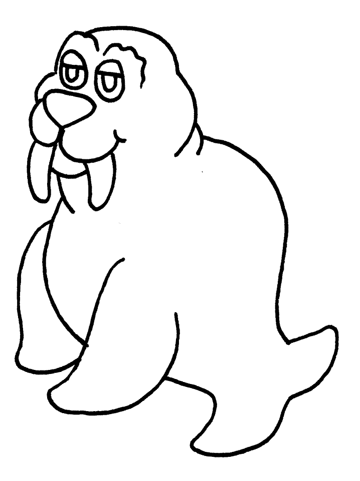 Walrus Colouring Pages- PC Based Colouring Software