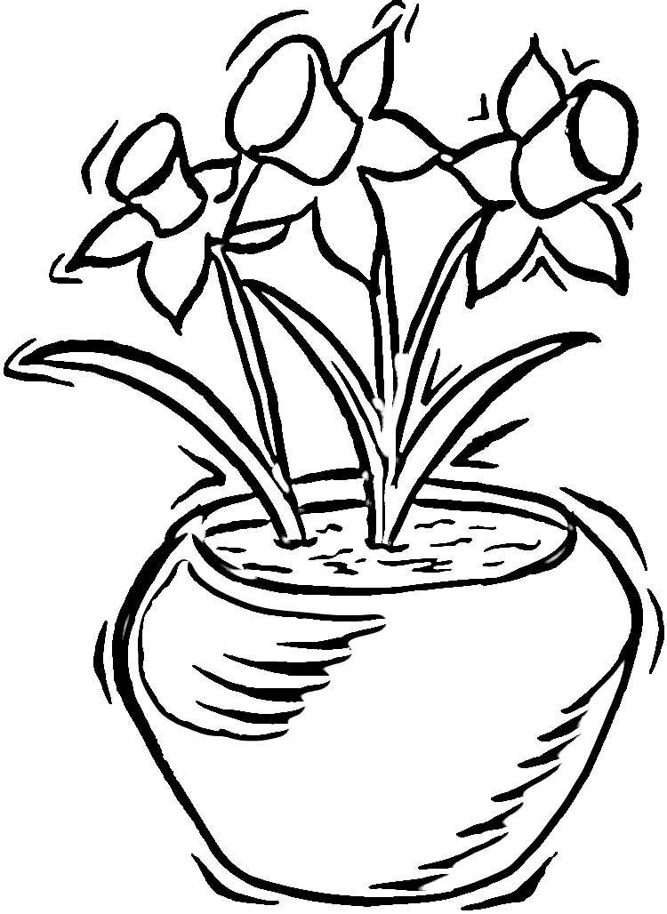 Free Daffodil Cartoon, Download Free Clip Art, Free Clip