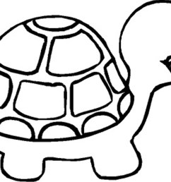 cute baby turtle clipart clipart library [ 1169 x 826 Pixel ]
