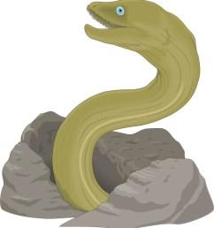 cartoon eel clipart library 1197096631903314722johnny 1197096631903314722johnny cartoon fish page 2 [ 1019 x 1100 Pixel ]