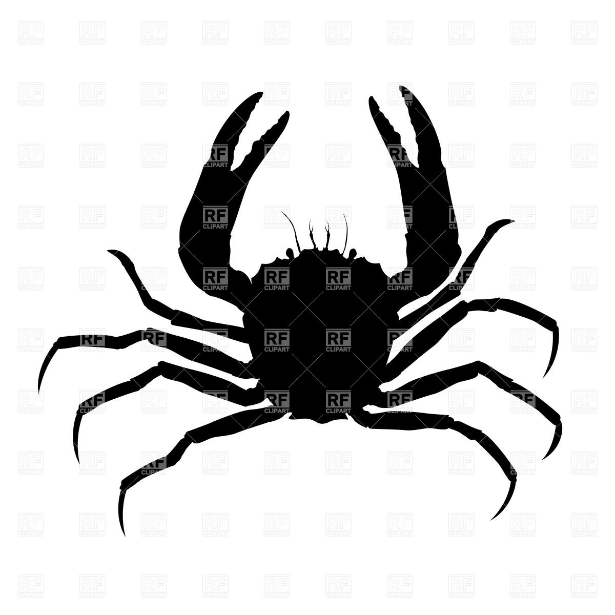 hight resolution of crab silhouette plants and animals download royalty free vector
