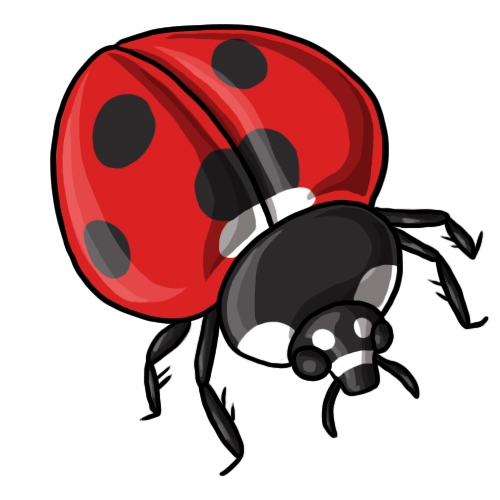 free lady bug clipart