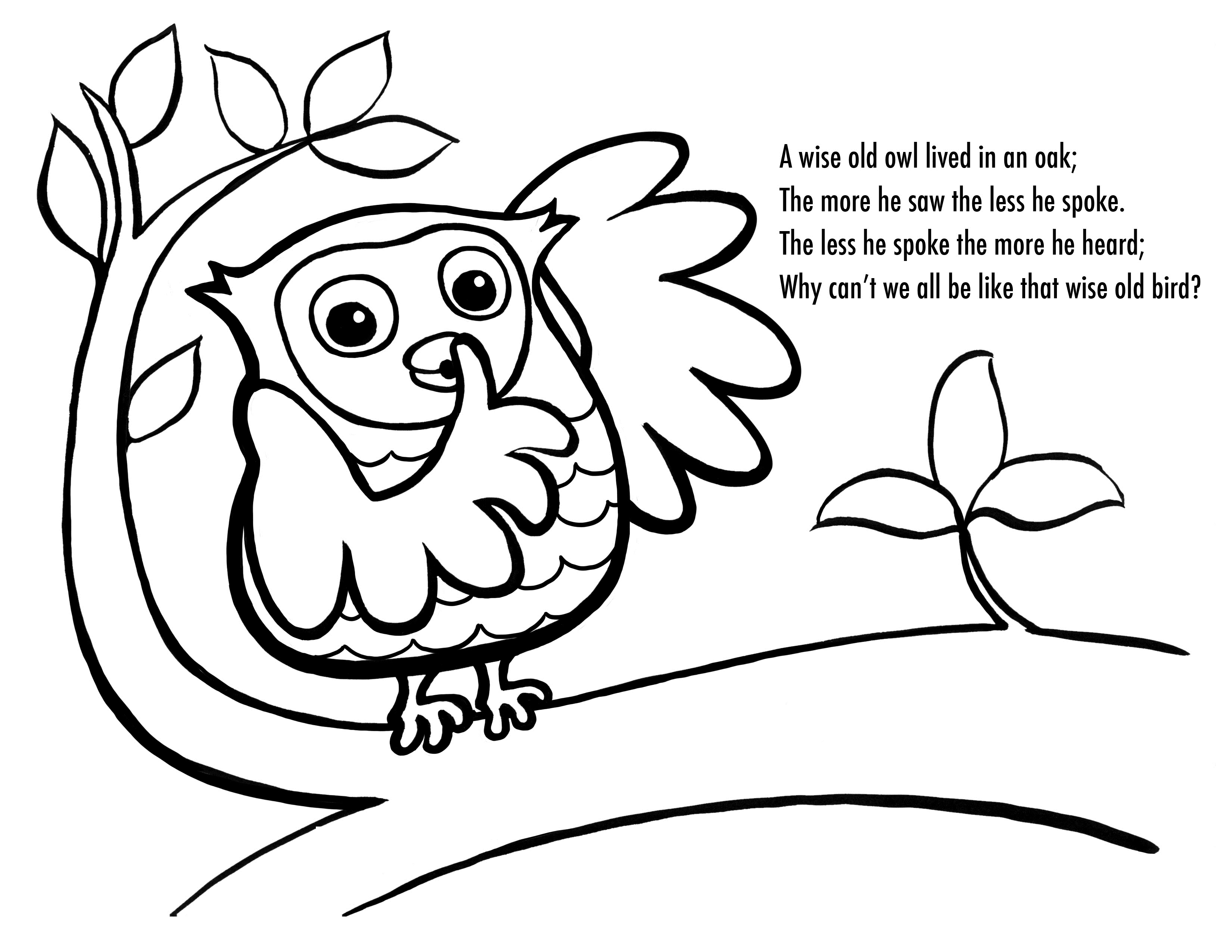 Free Cartoon Owl Coloring Pages, Download Free Clip Art