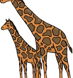 cartoon baby giraffe images clipart library [ 1457 x 2061 Pixel ]