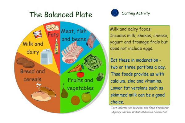 Balanced Diet Chart Viralnova