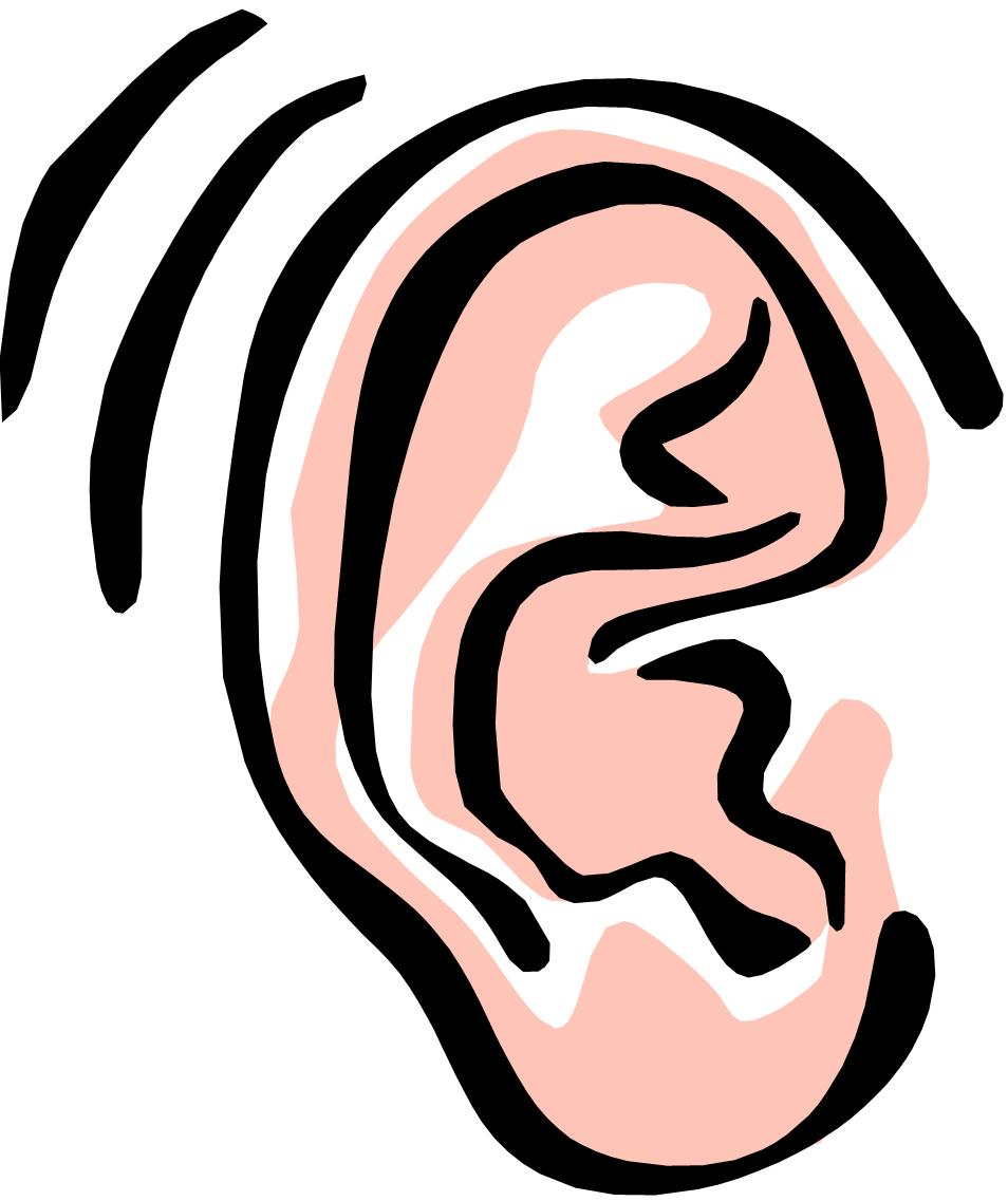 hight resolution of two ears clipart clipart library free clipart images